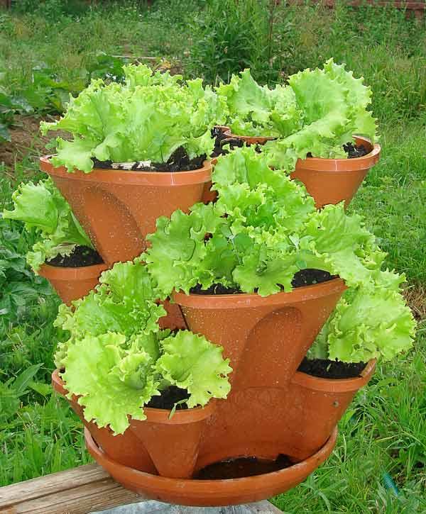 Для растений вертикальные грядки